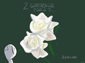 2gardenias
